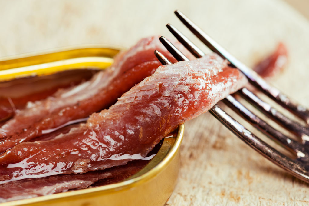 Anchovies in olive oil, Cúrate Trips