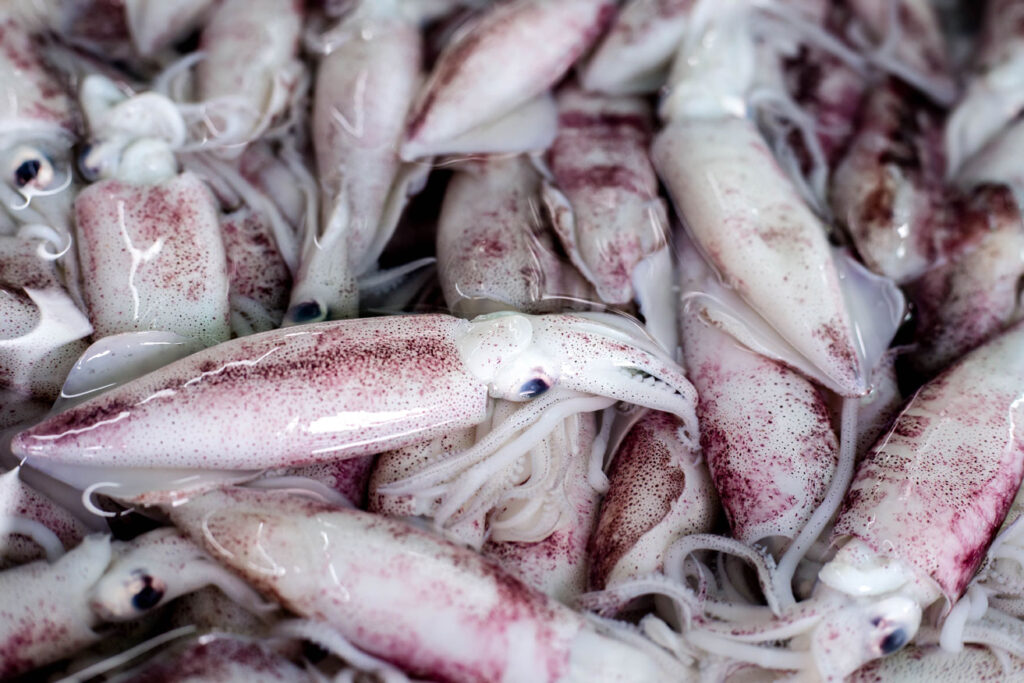 Fresh calamary, Mediterranean delight at CÚRATE Trips