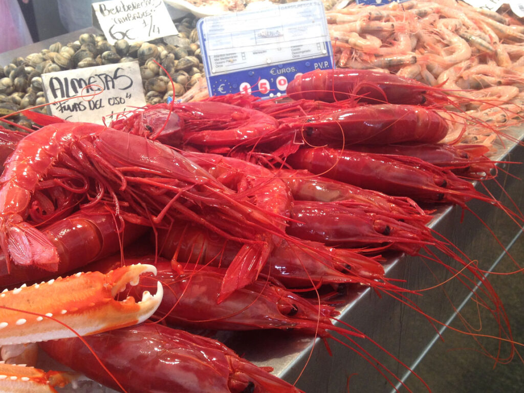 Carabineros are king shrimps, taste them at CÚRATE Trips