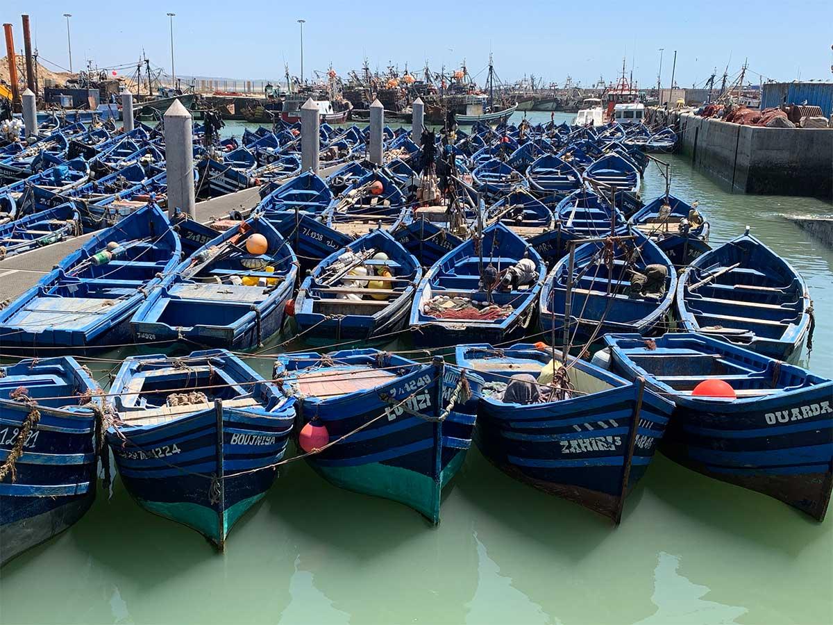 Essouira, a coastline city in Morocco, CÚRATE Trips