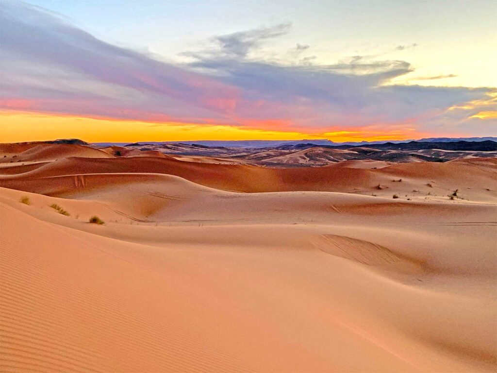 Unique private custom tours in Morocco with Paladar y Tomar