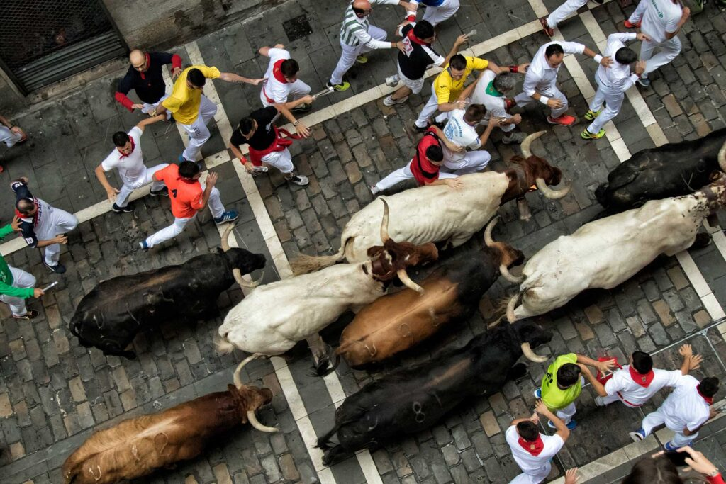 Running of the Bulls: a unique annual festival in Pamplona, Spain, with Paladar y Tomar