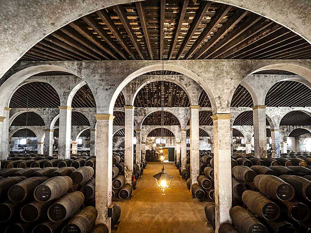 Paladar y Tomar takes you in the most exclusive sherry bodegas tour