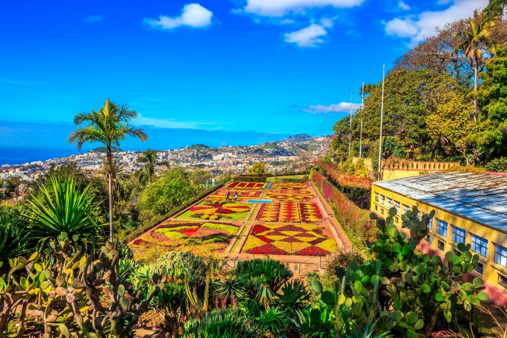 Madeira, the Pearl of the Atlantic, by Paladar y Tomar