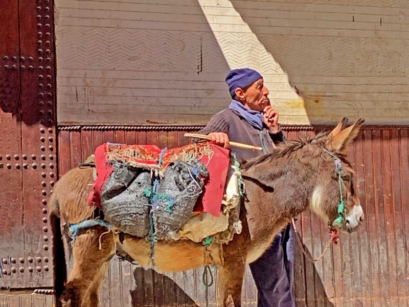 Explore Fez, de cultural and religious capital of Morocco