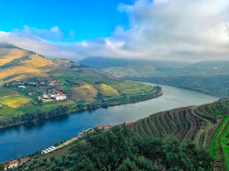 Impressive vineyards in Douro Valley, CÚRATE Trips